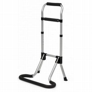 <br><b>Mobility Handrail</b>